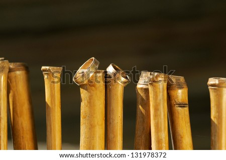 wedding rings on dry bamboo sticks - stock photo