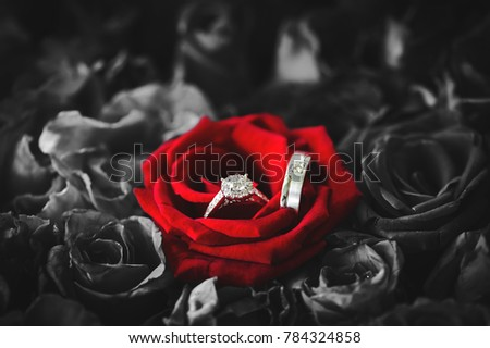 rings red rose photo image loving wedding with letter stock colourbox and