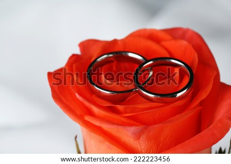 Wedding rings on wedding bouquet, close-up, on light background - stock photo