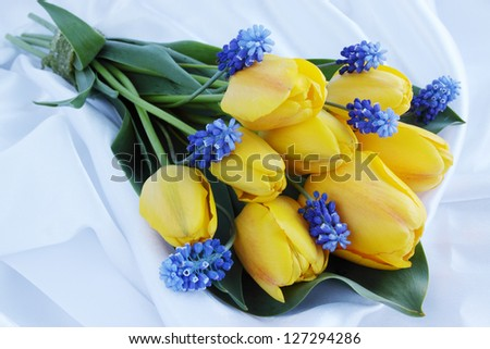 wedding spring bouquet of tulips and muscari - stock photo