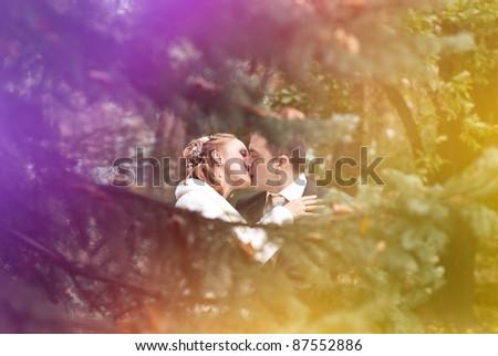 wedding walk - stock photo