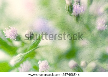 weed flowers in vintage color style on mulberry paper texture for background - stock photo