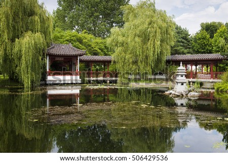 weeping trees by the lake in the Chinese Garden