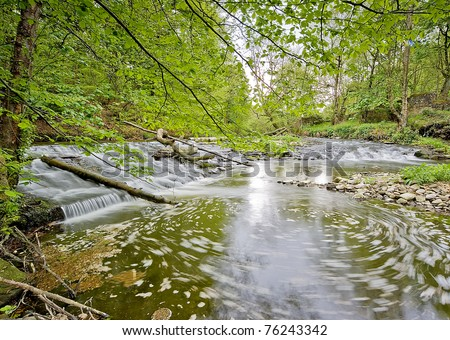 Weir on river in woodland setting