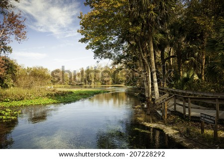 Wekiva Springs in Florida in the Fall. - stock photo