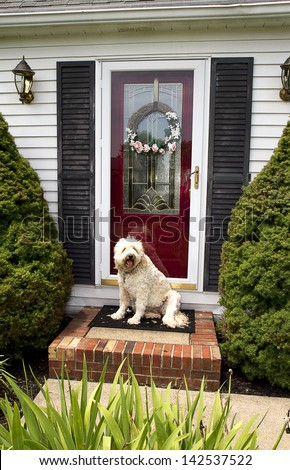Welcome home image of dog sitting on front step of home greeting - stock photo