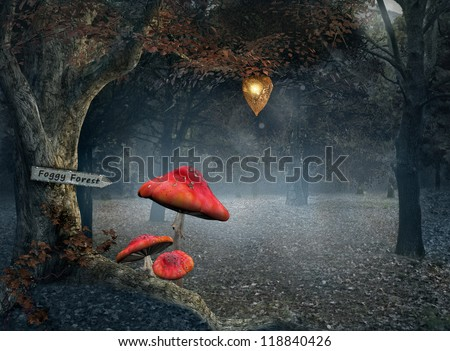 Welcome to the foggy forest - stock photo