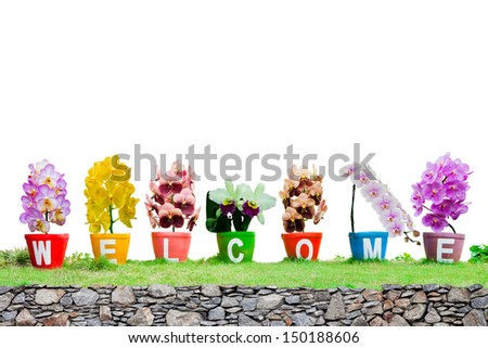 Welcome word made from Jardiniere  orchid flowers isolated on white background