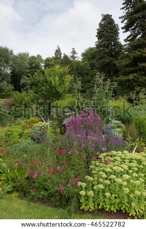 Well Stocked Herbaceous Border in a Country Cottage Garden in Somerset, England, UK