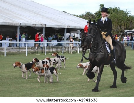 WELLINGTON, FL - NOVEMBER 28: The Palm Beach Hounds fox hunting team makes an appearance at the Suncast Palm Beach Steeplechase November 28, 2009 in Wellington, FL. Female rider on black Friesian.