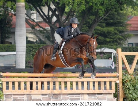 WELLINGTON, FLORIDA -March 28, 2015: An unidentified rider competing in week 11 at the Winter Equestrian Festival. Wellington is the winter destination for equestrian competitors of many disciplines