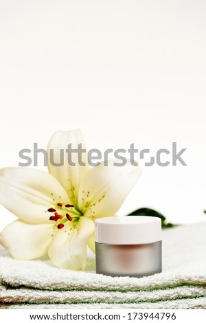 Wellness and spa elements isolated on white background. - stock photo