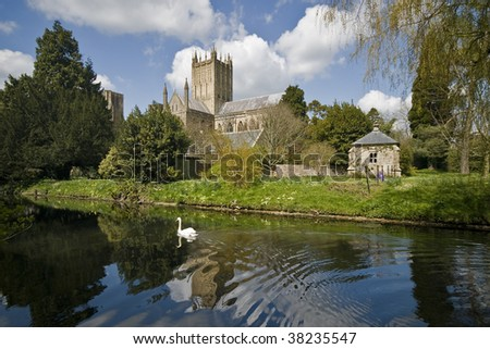 Wells cathedral viewed form the park with the river and a swan - stock photo