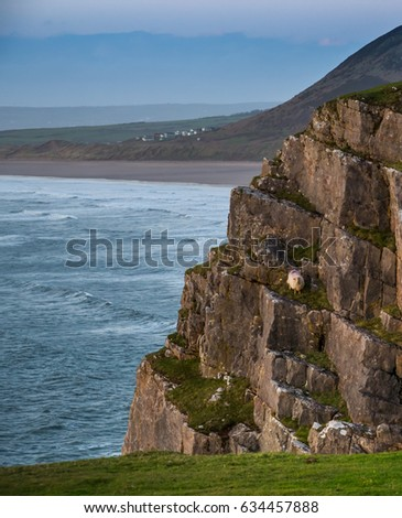 Welsh View Overlooking Beach Sea Worms Stock Photo Royalty Free