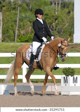 WEST PALM BEACH, FLORIDA - JUNE 24: Rebecca Cohen and Day of Diva compete in the Wellington Classic Dressage in the Tropics event on June 24, 2009 in West Palm Beach