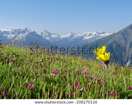 Western Alps, Italian Alps, French Alps, view to the Mont Blanc massif from the italian side - stock photo