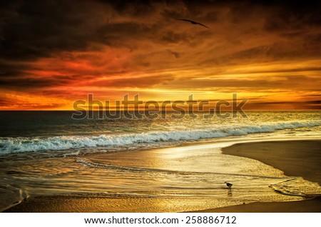 Western Australian Beach Sunset - stock photo