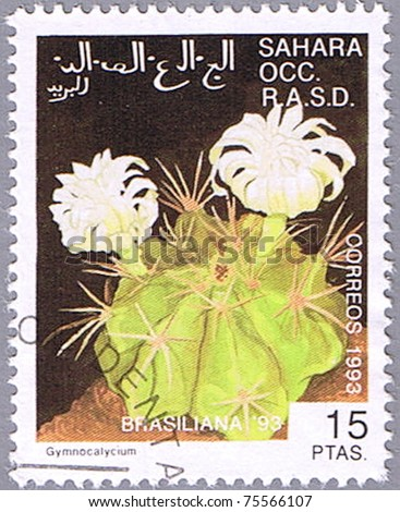 WESTERN SAHARA - CIRCA 1993: A stamp printed in Western Sahara shows Gymnocalycium, series devoted to cacti, circa 1993