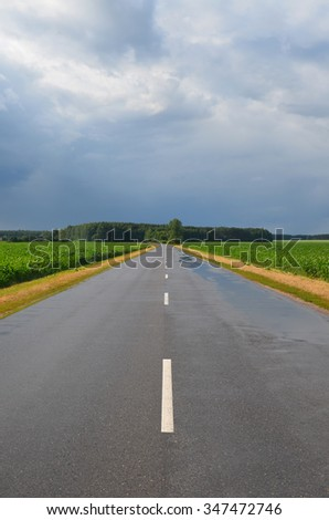 Wet asphalt road on a cloudy day - stock photo