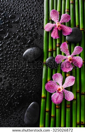 Wet background -three pink orchid with black stones on bamboo grove  - stock photo