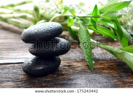 Wet black smooth polished hot massage stones with water drops and droplets in Zen style soothing cairn next to bamboo leaves on in relaxing wellness holistic spa before rejuvenation health treatment - stock photo