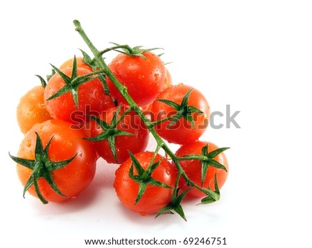 Wet fresh tomatoes with stem & leaves on white background - stock photo