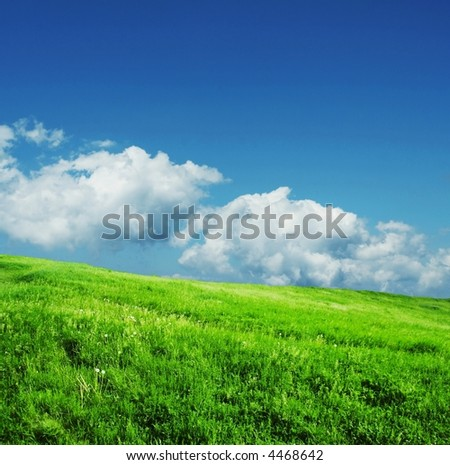 Wet grassland and sky in the morning