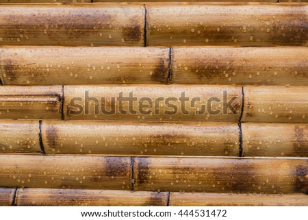 wet yellow bamboo background with water drops - stock photo