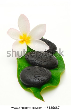 wet zen stones and frangipani flower on a leaf