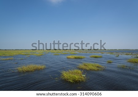 wetland Beautiful Summer landscape over wetlands and harbor - stock photo