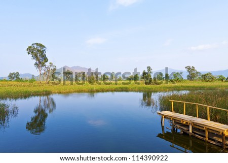 Wetland lake and wooden pier - stock photo