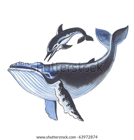Whale and dolphin - stock photo