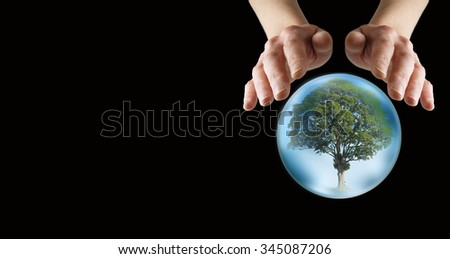 What does the future hold for our trees -  female hands hovering over a crystal ball showing a lone tree within, on a wide black background