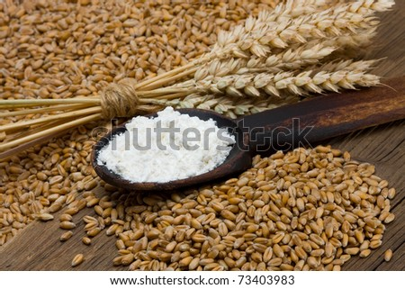Wheat and flour on wooden spoon - stock photo
