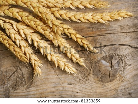 Wheat Ears on the Wood Background - stock photo