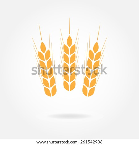 Wheat ears or rice icon or sign. Agricultural symbol. Design element for bread packaging or beer label. - stock photo