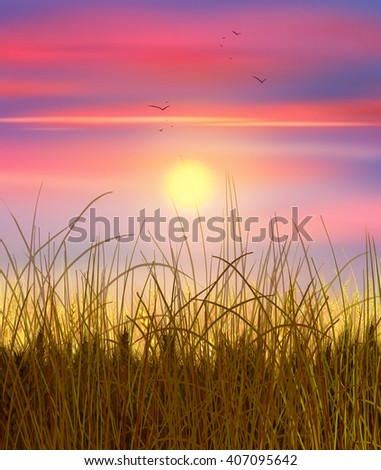 Wheat field sunset. Sky and sun, wheat field. Sun rays on horizon in rural meadow. Digital painting, illustration. Wallpaper