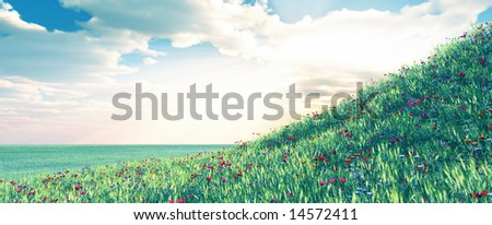 Wheat field with flowers