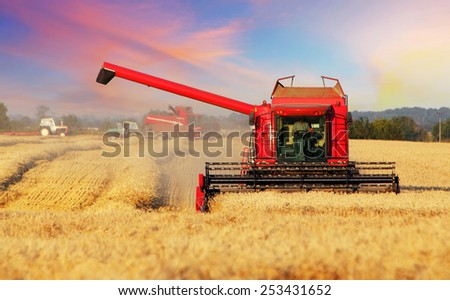 Wheat field with harvester - stock photo