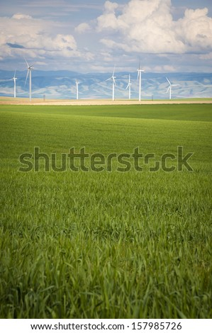 Wheat fields and wind turbines under a summer clouds in Washington State - stock photo