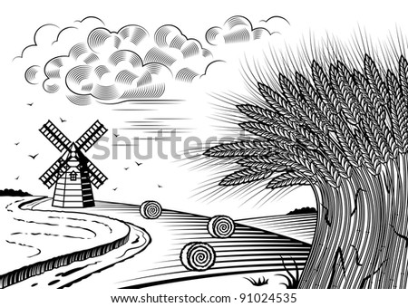 Wheat fields landscape black and white - stock photo