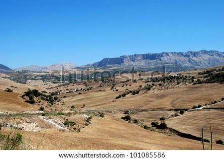 Wheat fields with El Torcal mountains to the rear, Near Almogia, Costa del Sol, Malaga Province, Andalusia, Spain, Western Europe. - stock photo