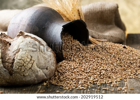 Wheat grain in the composition with cooking items  - stock photo