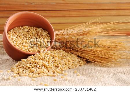Wheat grains ,Grain of the wheat , whole wheat grains, - stock photo