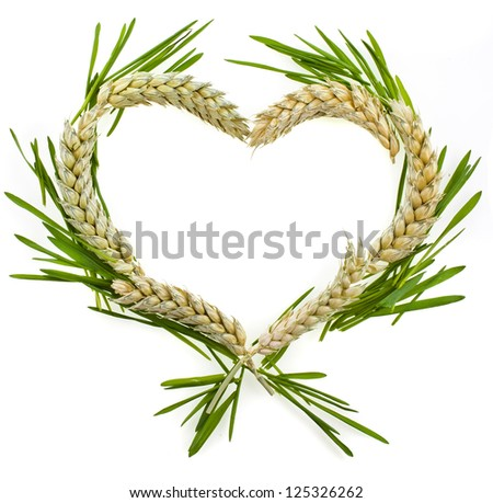 Wheat Heart Border Frame with copy space isolated on white background - stock photo