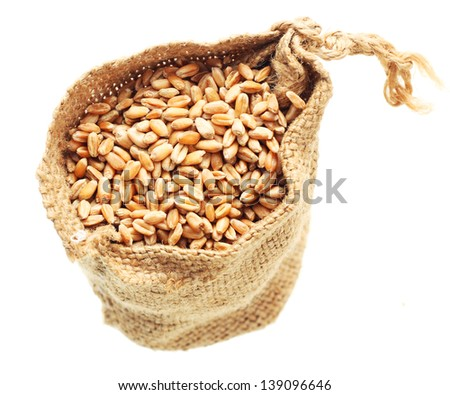Wheat in canvas sack isolated. - stock photo