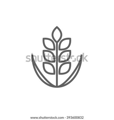 Wheat line icon. - stock photo
