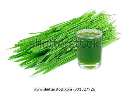 wheatgrass juice isolated on white background - stock photo