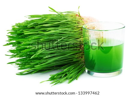 Wheatgrass juice with sprouted wheat isolated on white background - stock photo