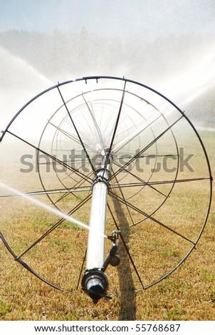 wheel irrigation of a alfalfa a field in the fertile Garden Valley area of Roseburg Oregon. - stock photo